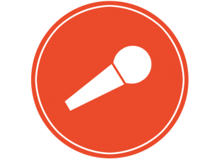microphone-package-icon-copy-300x225